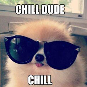 Chill-dude[1]